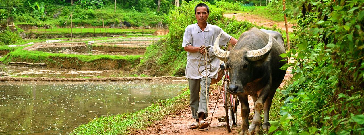 Vietnam/Begegnungs-Reise